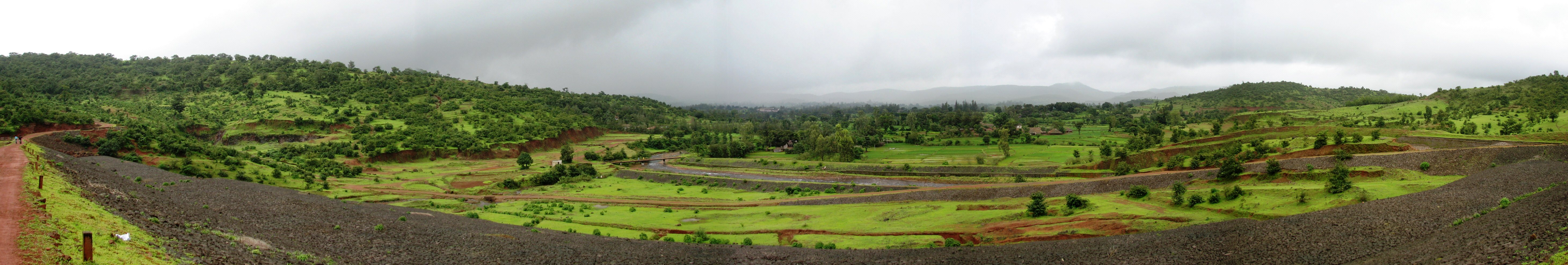 The lush green landscape of the area